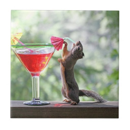 Squirrel Drinking a Cocktail Ceramic Tile