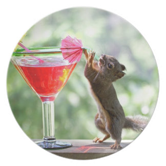 Squirrel Drinking Cocktail Dinner Plate