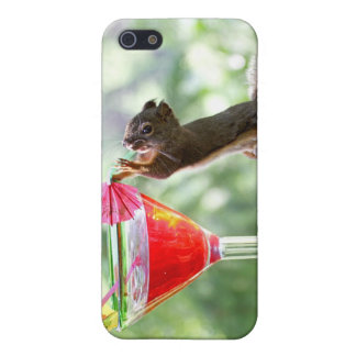 Squirrel Drinking Cocktail Case For iPhone 5