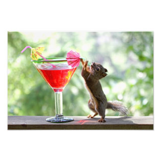 Squirrel Drinking Cocktail Photo Print