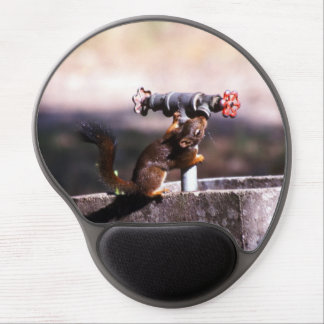 Squirrel drinking gel mouse pad
