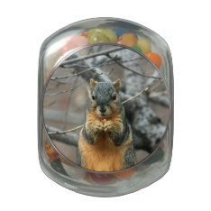 Squirrel Eating A Nut Glass Jar at Zazzle