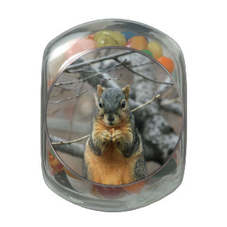 Squirrel Eating a Nut Glass Jar
