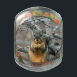 "Squirrel Eating a Nut Jelly Belly Candy Jar<br><div class=""desc"">jar</div>"