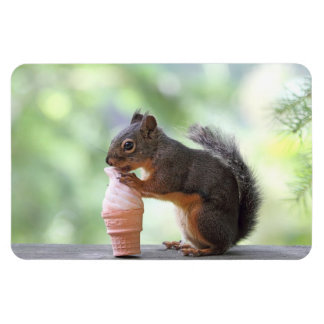 Squirrel Eating an Ice Cream Cone Magnet