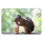 Squirrel Eating an Ice Cream Cone Rectangular Photo Magnet