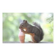 Squirrel Eating an Ice Cream Cone Rectangular Sticker