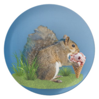 Squirrel Eating Ice Cream Cone Melamine Plate