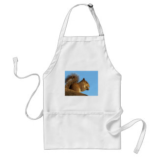 Squirrel Eating in a Tree Against Clear Blue Sky Adult Apron