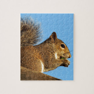 Squirrel Eating in a Tree Against Clear Blue Sky Jigsaw Puzzle