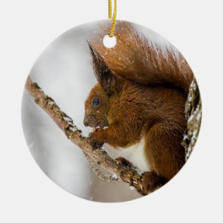 Squirrel Eating In A Tree Christmas Ornaments