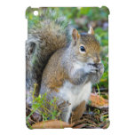 Squirrel Eating iPad Mini Covers