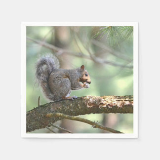 Squirrel Eating Lunch Paper Napkin
