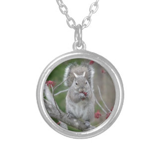 Squirrel eating silver plated necklace