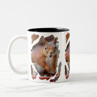 Squirrel ~ Écureuil ~ squirrels ~ by JL GLINEUR Two-Tone Coffee Mug