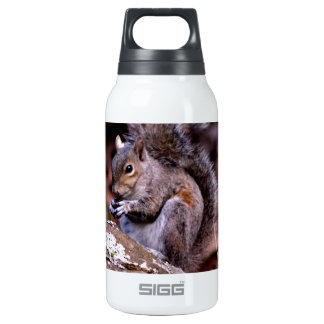 Squirrel enjoying His Meal Insulated Water Bottle