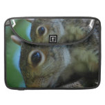 "Squirrel Face 15"" MacBook Sleeve Sleeve For MacBook Pro"