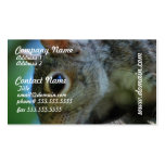 Squirrel Face Business Cards