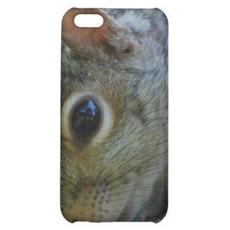 Squirrel Face iPhone 4 Case
