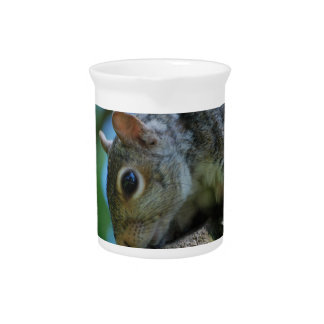 Squirrel Face Pitcher