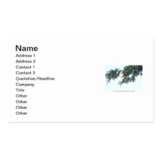 Squirrel Going Out on a Limb Double-Sided Standard Business Cards (Pack Of 100)