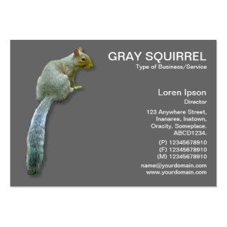 Squirrel - Gray Large Business Cards (Pack Of 100)