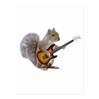 Squirrel Guitar Postcard