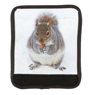 Squirrel Handle Wrap