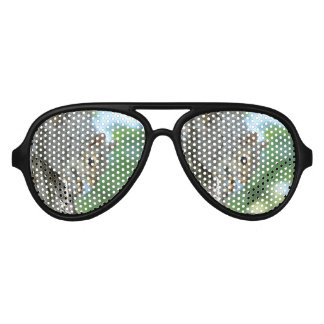 Squirrel Hanging in A Tree Aviator Sunglasses