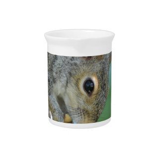 Squirrel Hanging in A Tree Beverage Pitchers