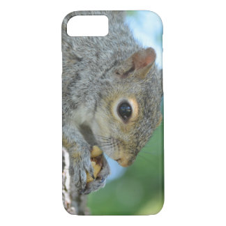 Squirrel Hanging in A Tree iPhone 7 Case
