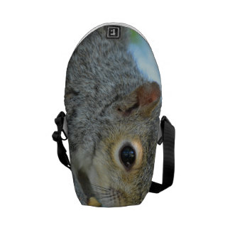 Squirrel Hanging in A Tree Messenger Bag