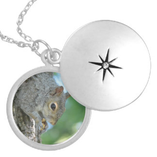 Squirrel Hanging in A Tree Round Locket Necklace