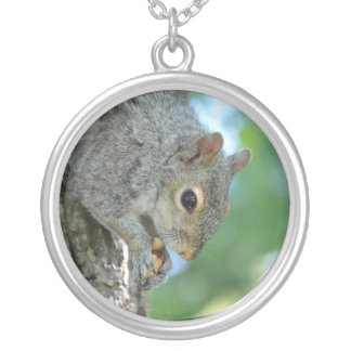 Squirrel Hanging in A Tree Round Pendant Necklace