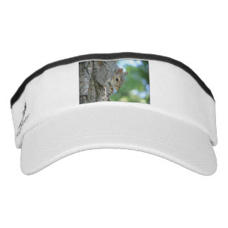 Squirrel Hanging in A Tree Visor