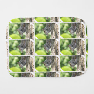 Squirrel Hanging Out Baby Burp Cloths