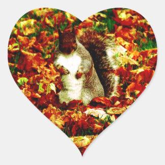 Squirrel Heart Sticker