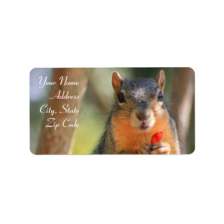 Squirrel Holding Cheese Puff Address Labels