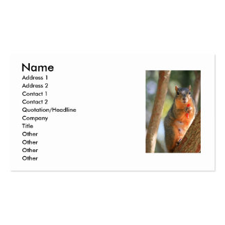 Squirrel Holding Cheese Puff Business Card