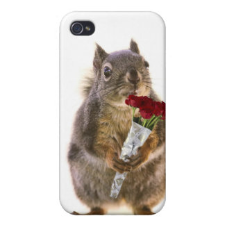 Squirrel Holding Red Rose Bouquet Case For iPhone 4