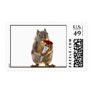 Squirrel Holding Red Rose Bouquet Postage Stamp