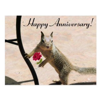 Squirrel Holding Rose Anniversary Card Postcards