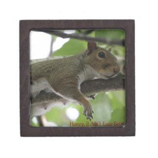 "Squirrel - ""Honey, It Ain't Easy Being a Women"" Premium Keepsake Box"