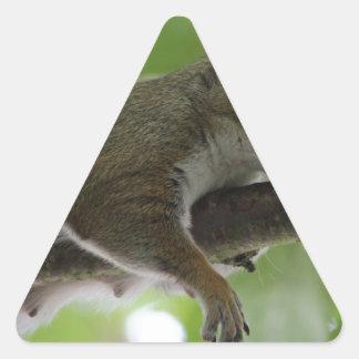 "Squirrel - ""Honey, It Ain't Easy Being a Women"" Sticker"