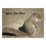 Squirrel Hungry Horatio Custom Greeting Card