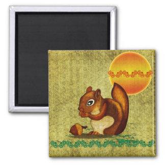 Squirrel Imanes Para Frigoríficos
