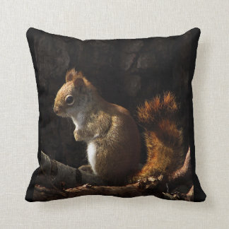 Squirrel in a Patch of Sunlight Pillows