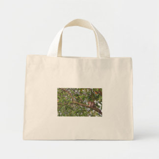 Squirrel in a Tree bag