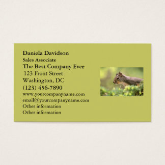 Squirrel in a Tree Business Card