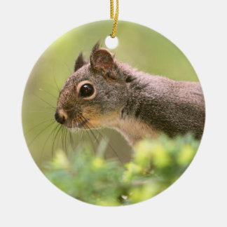 Squirrel in a Tree Ceramic Ornament
